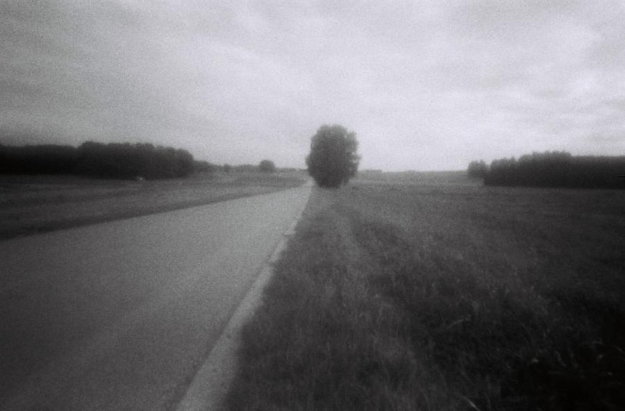 Ahnen_4